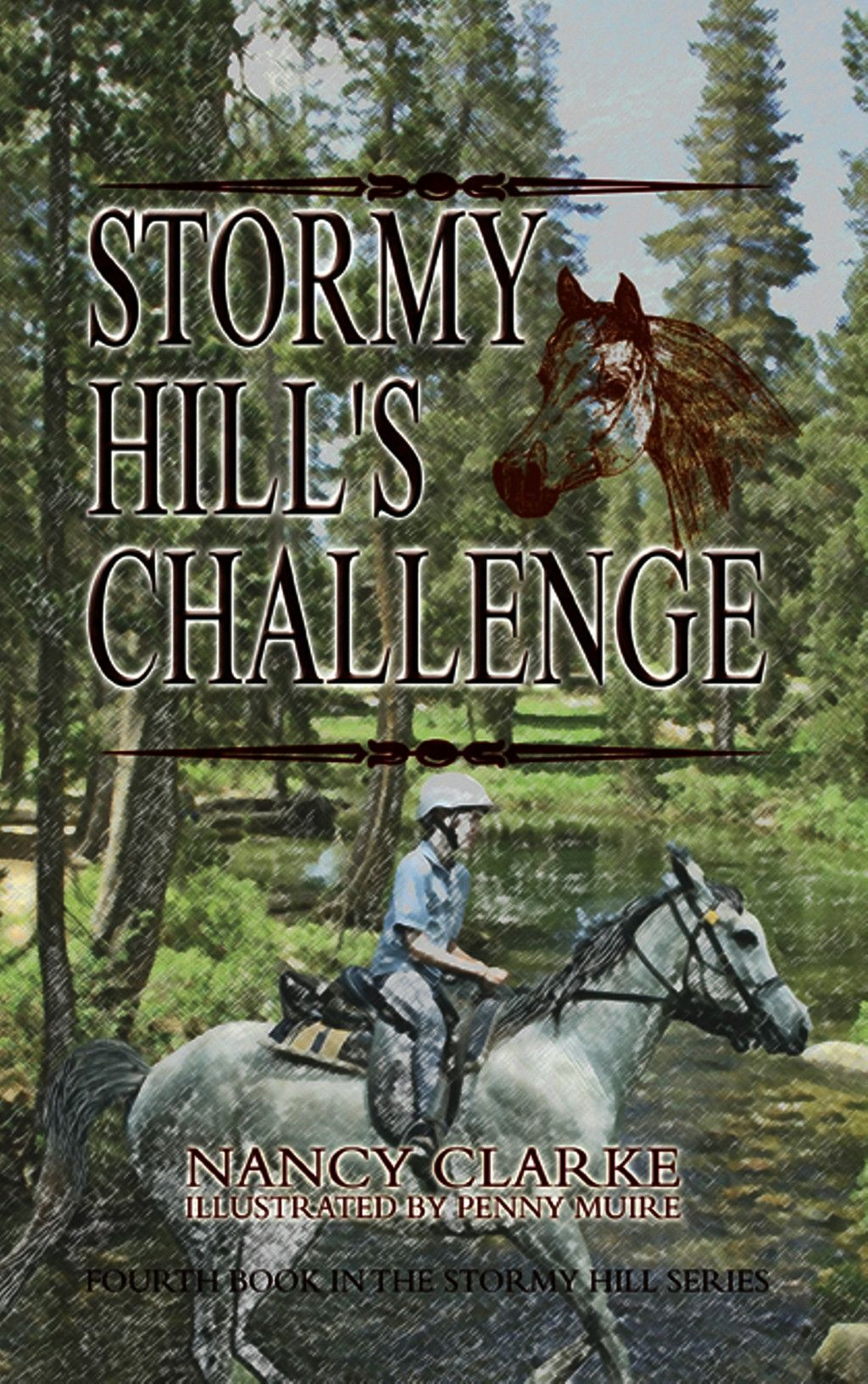 Stormy Hill''s Challenge