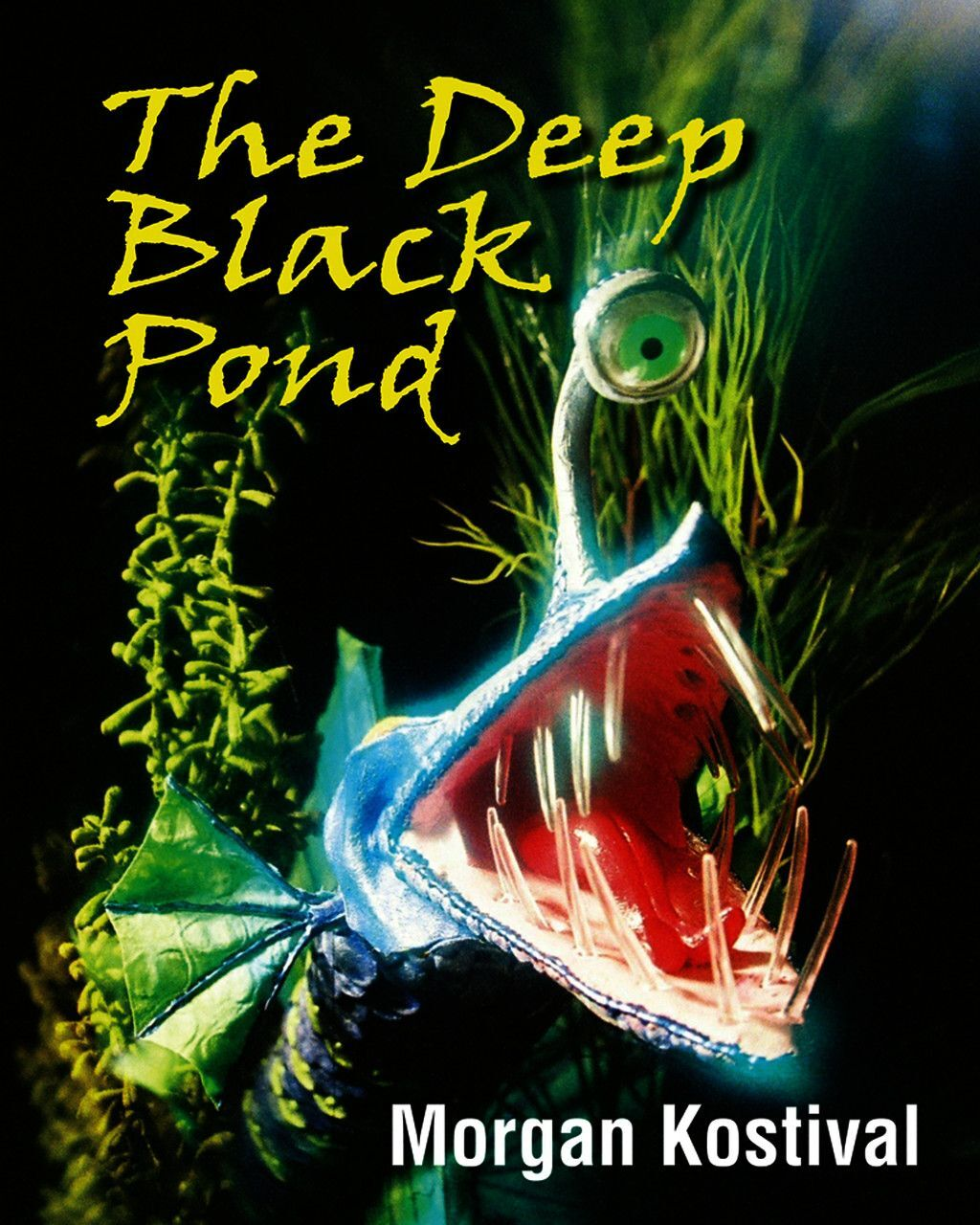 The Deep Black Pond