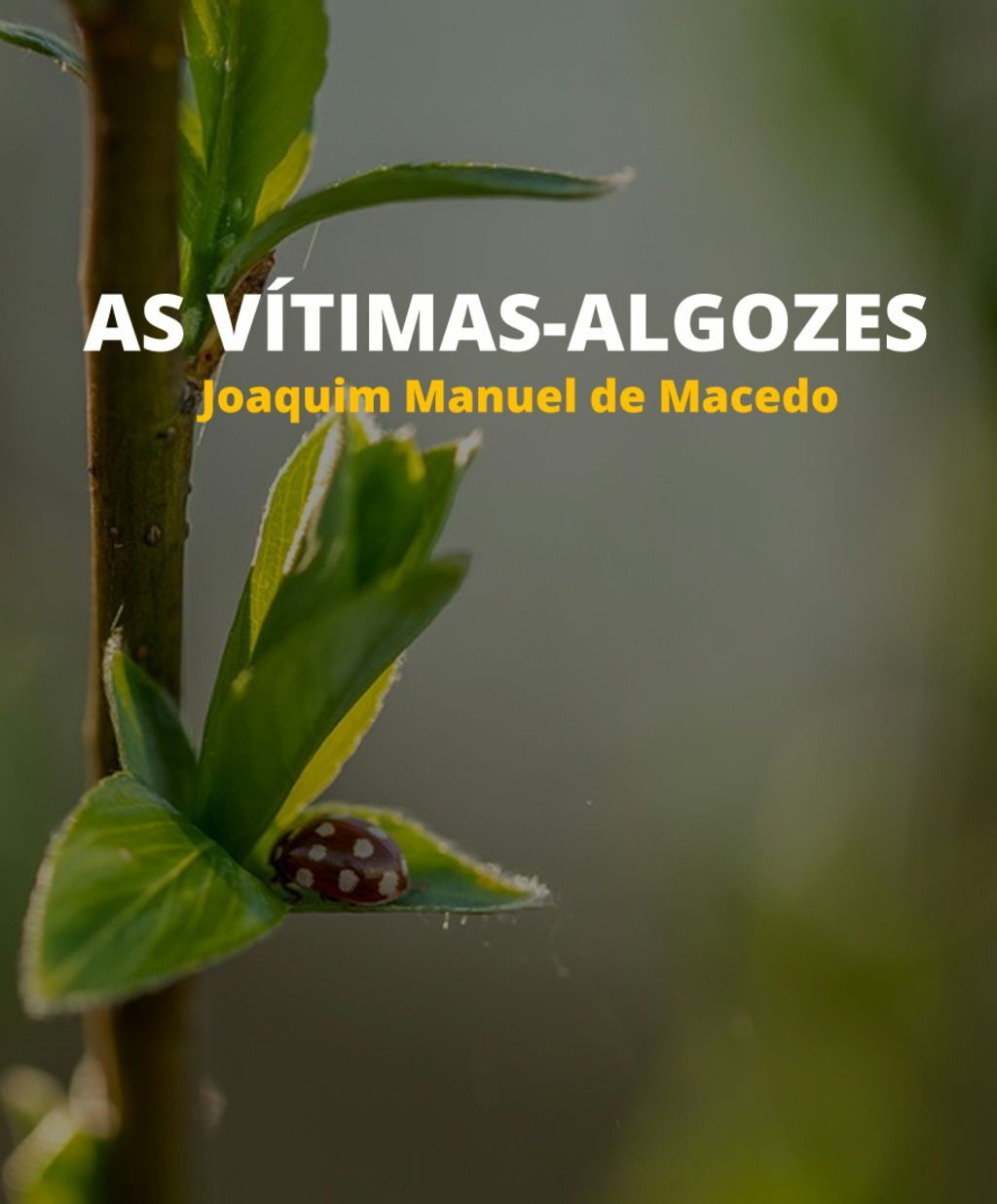 As Vítimas-Algozes