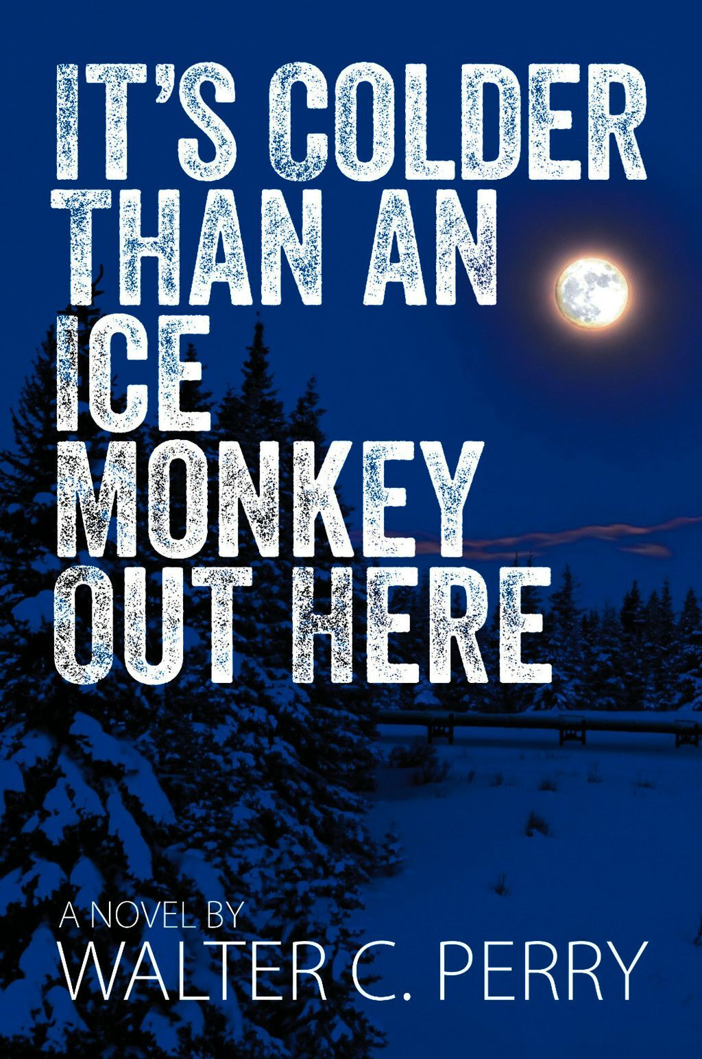 It''s Colder Than An Ice Monkey Out Here