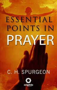 Essential Points In Prayer